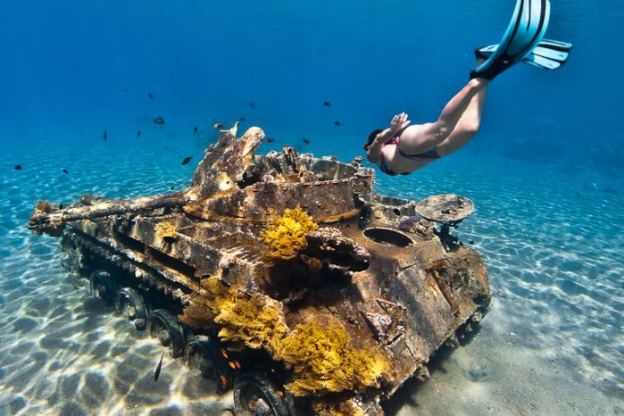 Dive Aqaba & Golden Triangle